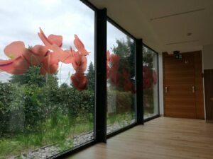 Dekorative Aufkleber für Fenster - Seniorenheim Muretinci